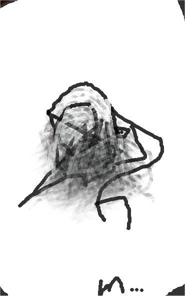"""""""profile B"""" - matieu 2016"""